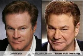 David Keith Totally Looks Like Robert Wuhl from Arli$$