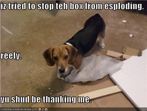 iz tried to stop teh box from esploding. reely. yu shud be thanking me.