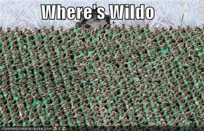 Where's Wildo