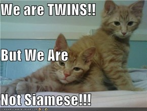 We are TWINS!! But We Are Not Siamese!!!