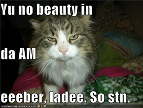 Yu no beauty in da AM eeeber, ladee. So stn.