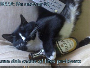 BEER: Da anzwer to  ann dah cauze of lifes problemz