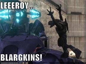 LEEEROY...  BLARGKINS!