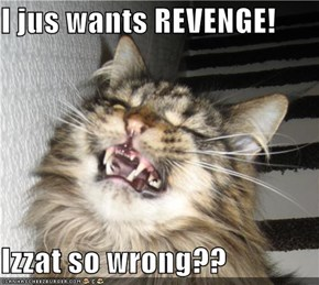 I jus wants REVENGE!  Izzat so wrong??