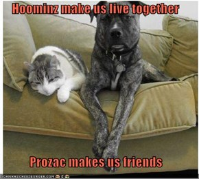 Hoominz make us live together  Prozac makes us friends