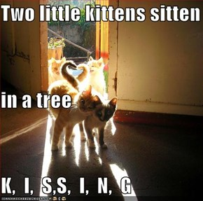 Two little kittens sitten in a tree K,  I,  S,S,  I,  N,  G