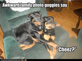 Awkward family photo goggies say