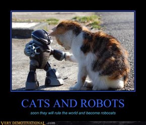 CATS AND ROBOTS