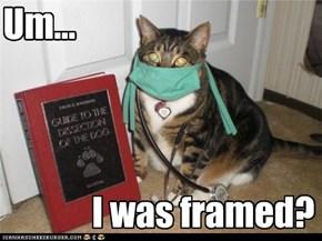 Um...                 I was framed?