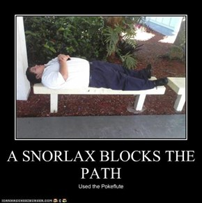 A SNORLAX BLOCKS THE PATH