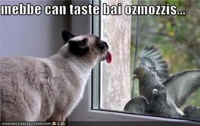 mebbe can taste bai ozmozzis...