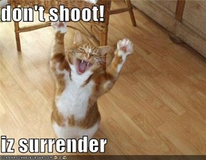 don't shoot!  iz surrender