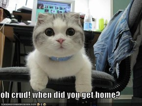 oh crud! when did you get home?