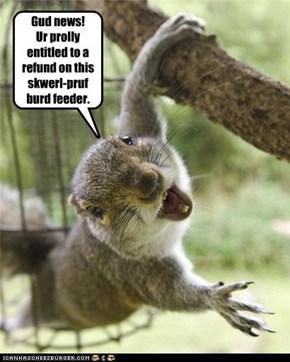 Gud news!  Ur prolly entitled to a refund on this skwerl-pruf burd feeder.