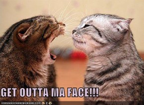GET OUTTA MA FACE!!!