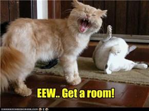 EEW.. Get a room!