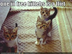 one in free kittehs is a flirt