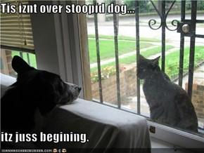Tis iznt over stoopid dog...  itz juss begining.