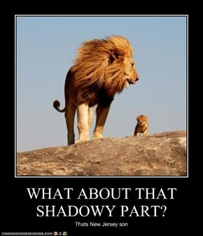 WHAT ABOUT THAT SHADOWY PART?