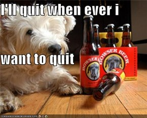 I'll quit when ever i  want to quit