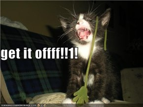 get it offff!!1!