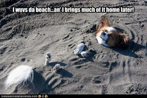I wuvs da beach...an' I brings much of it home later!