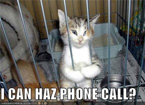 I CAN HAZ PHONE CALL?