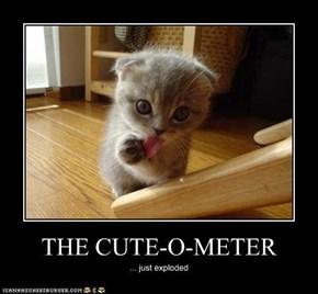 THE CUTE-O-METER