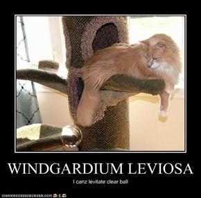 WINDGARDIUM LEVIOSA