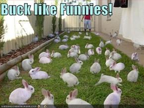 Buck like Funnies!