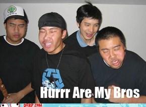 Hurrr Are My Bros