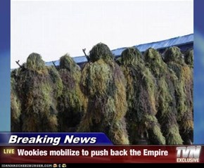 Breaking News - Wookies mobilize to push back the Empire