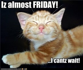 Iz almost Friday!