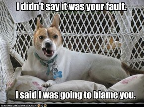 I didn't say it was your fault.