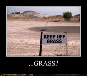 ...GRASS?