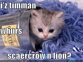 i'z timman whurs scaercrow n lion?