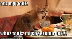 ohz my godz!  whoz tookz mi cheezeburger!!!