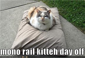 mono rail kitteh day off