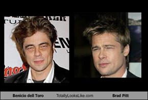 Benicio dell Toro Totally Looks Like Brad Pitt