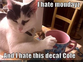 I hate mondayz  And I hate this decaf Cofe