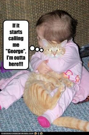 Baby gonna luv 'em n' squeeze 'em...