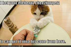 I bet youz elebenty cheezburgerz  Iz can get it inna his cone from here.