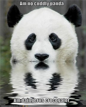 Am no cuddly panda  Am daingerus crocogator