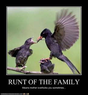 RUNT OF THE FAMILY