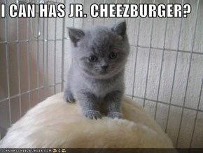 I CAN HAS JR. CHEEZBURGER?