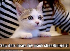 Sew dats hoaw dey maek cheezburgerz!