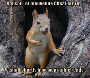 Bonsoir, et bienvenue Chez l'Arbre.  We shall shortly have your table ready.