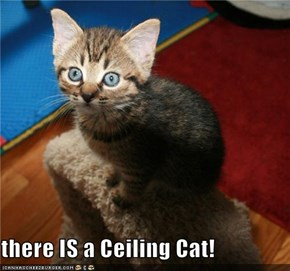 there IS a Ceiling Cat!
