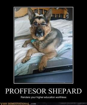 PROFFESOR SHEPARD