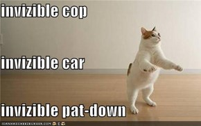 invizible cop invizible car invizible pat-down